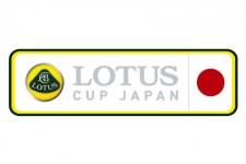 lotus-cup-web1-225x150 (1)